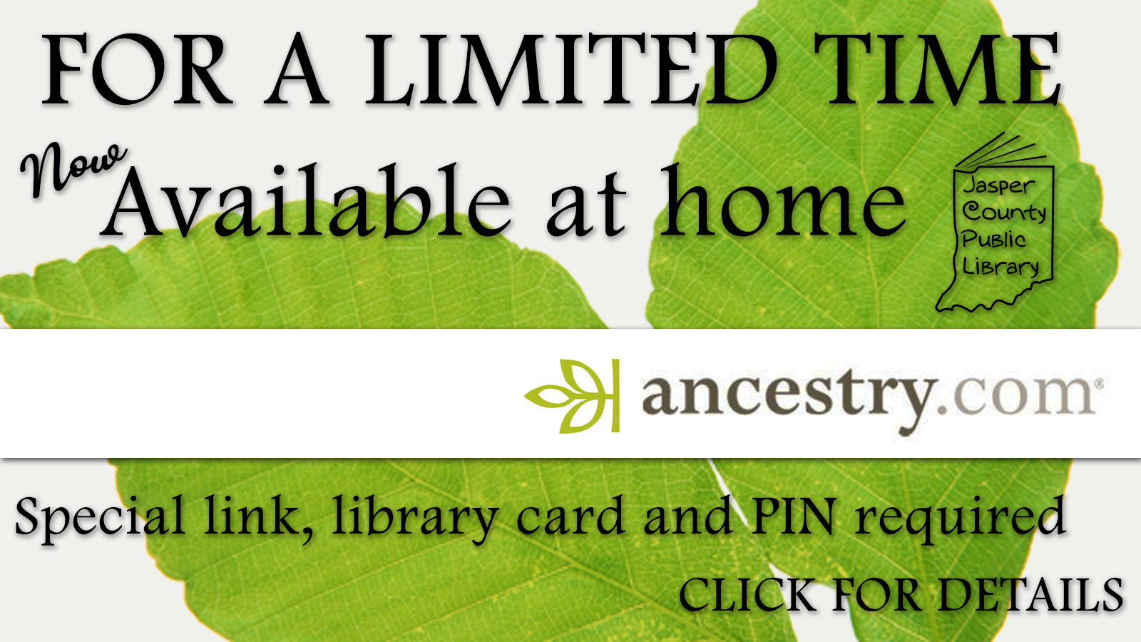 For a limited time, special link, library card and PIN required.